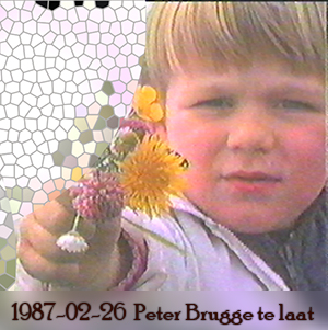 Weeshuis van de Hits 26 februari 1987 (Peter Brugge is te laat)