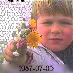 Weeshuis van de Hits 3 juli 1987